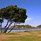 Mount Maunganui Beach by AnnDixon