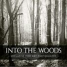 Into the Woods by Dorit Fuhg