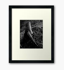 Man Made Framed Print