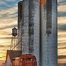 Great Western Sugar Mill Longmont Colorado Sunrise by Bo Insogna
