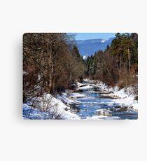germany, winter brook Canvas Print