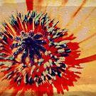 Poppy (layered) by John Tomasko