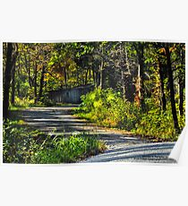 Winding Roads Poster