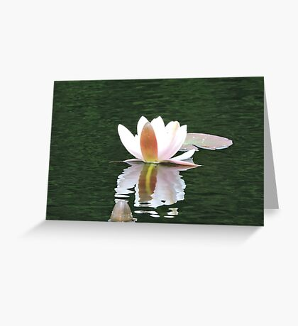 Never Be Afraid to Bloom & Shimmer Greeting Card