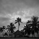 Chapel amongst the palm trees by Andrew  MCKENZIE