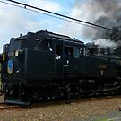 SL train by Mariko Suzuki