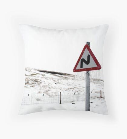 l\l Throw Pillow