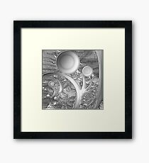 Seeing Everything in Black and White Framed Print
