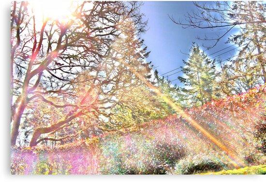 spectral analyst by BriteFuture