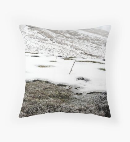 untitled #167 Throw Pillow