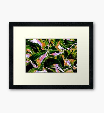 Fractalius Hosta Framed Print