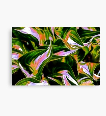 Fractalius Hosta Canvas Print