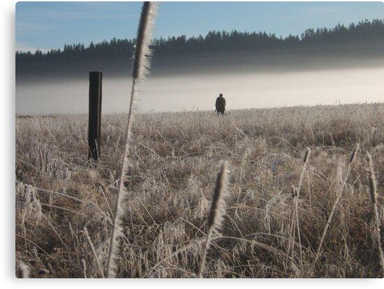 Morning hunt by ANDREA SIDENSTRICKER