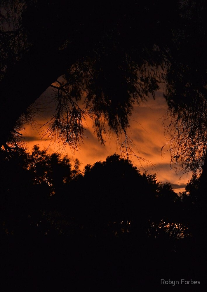 Australia Sunset by Robyn Forbes