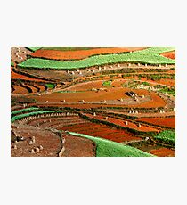 Patterns at Dongchuan Photographic Print