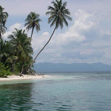 San blas . Panama  by patricemassa