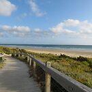 Board walk to the beach by Jackson  McCarthy
