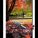 Tenterfield Autumn by Kym Howard