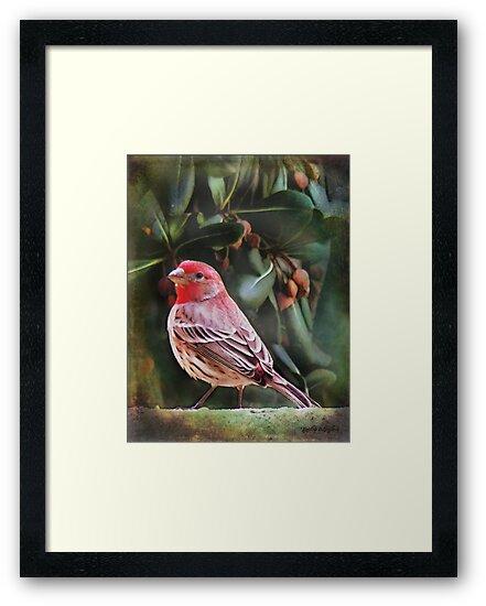 Little Bird IV (Art & Poetry) by Rhonda Strickland