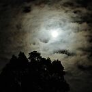 Not an astronomy Moon by Duncan Waldron