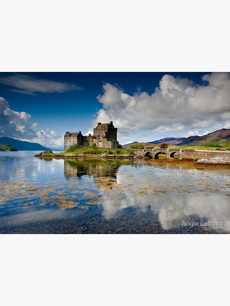 Scotland: Eilean Donan Sunshine by AngelaBarnett