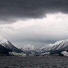 Hardangerfjorden cruise - Fjord view by Algot Kristoffer Peterson