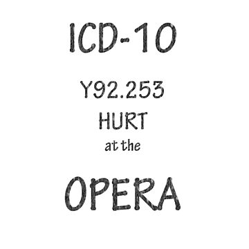 ICD-10: Y92.253  Hurt at the Opera by Shutterbug-csg