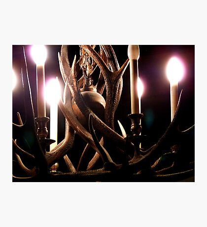 A Clash of Antlers  Photographic Print