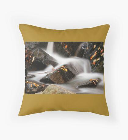Autumn in Hacklebarney Throw Pillow