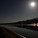Desert Lights by teresalynwillis