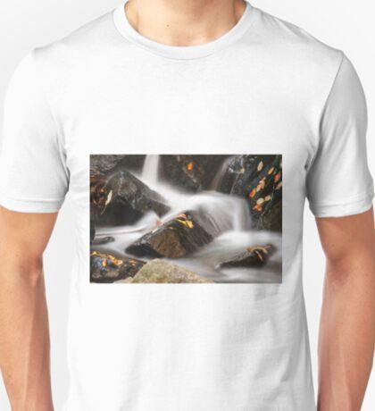 Autumn in Hacklebarney T-Shirt