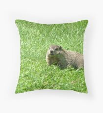 What Shadow Throw Pillow