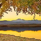 Golden Autumn Twin Peaks View by Bo Insogna
