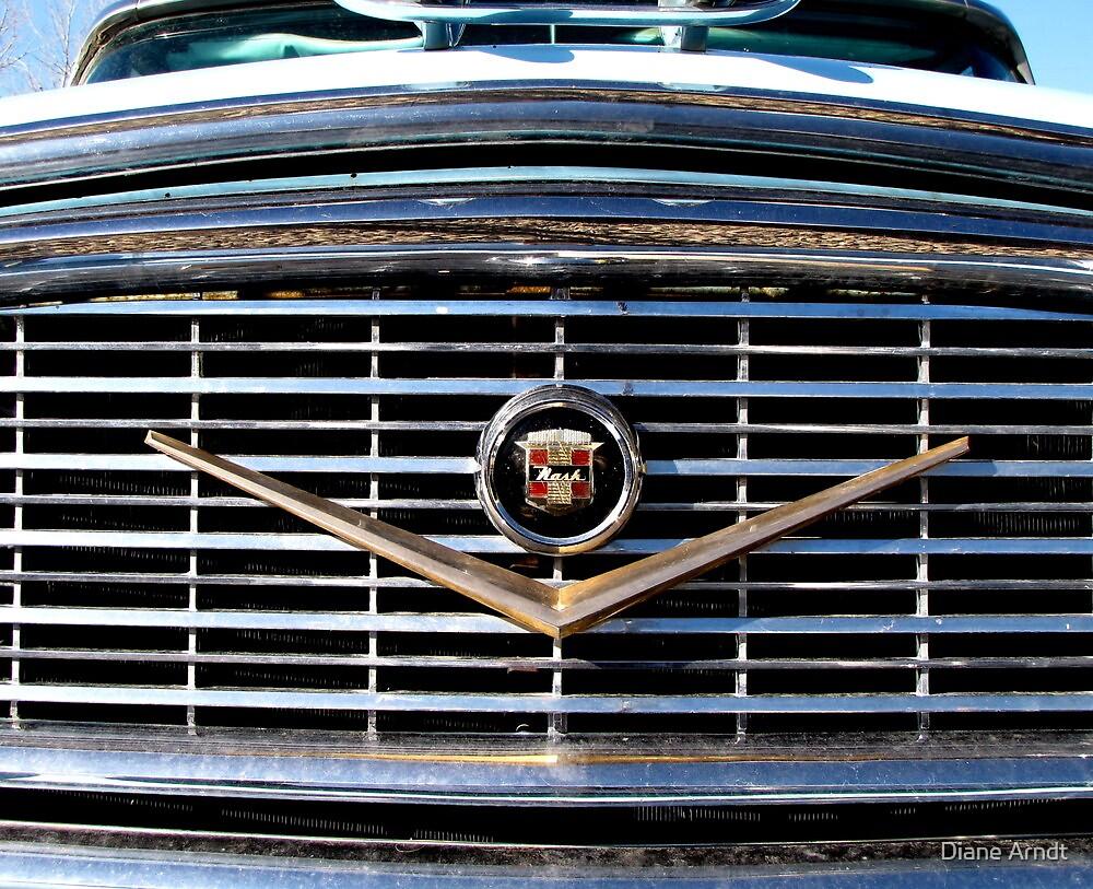 Nash Ambassador by Diane Arndt
