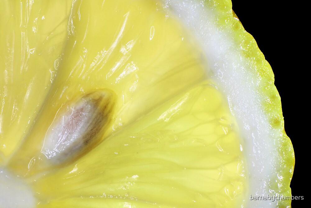 Yellow by barnabychambers