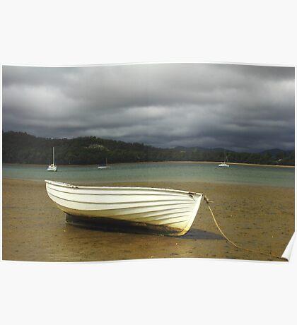 Squeaking Point , nor west Tasmania , Australia Poster