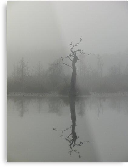 The Bird Tree by May Lattanzio