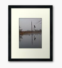 fog,Econfina Creek,wasp tree,cypress,swamp Framed Print