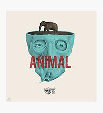 Animal. Photographic Print