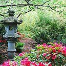 Japanese Lantern ~ Dedication to Japan  by Marjorie Wallace