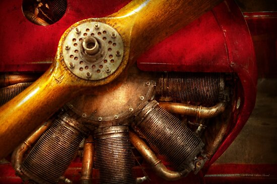 Pilot - Prop - The barnstormer by Michael Savad