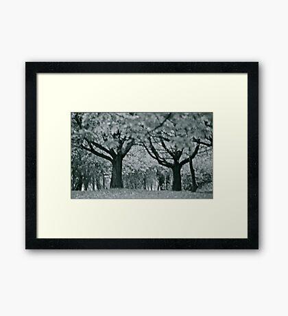 He & She , Framed Print