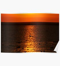 Sunset Dining Poster