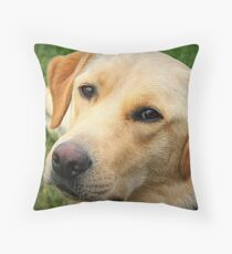 Fabulously Freddie Throw Pillow