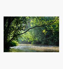 Flow Photographic Print