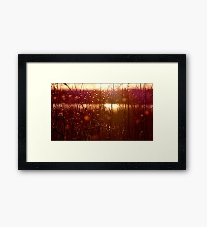 Faeries and Sylphs of the Sunset Framed Print