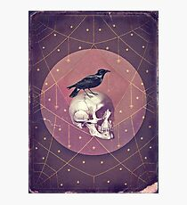 Crow and Skull Collage Photographic Print