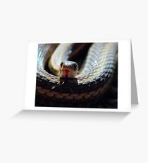 Snake Tongue Greeting Card