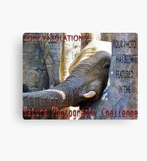 Nature-Elephant -NP challenge Canvas Print