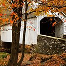 Loux Covered Bridge by Debra Fedchin